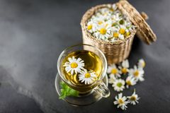 Cup of chamomile tea. Chamomile tea in a glass cup Stock Image