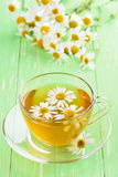 Chamomile tea in glass cup Royalty Free Stock Photos