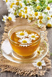 Chamomile tea in glass cup Royalty Free Stock Images