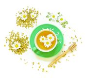 Chamomile tea in cup isolated on white background. Chamomile tea in green cup, dry tea flowers, fresh chamomile flowers isolated on white background. Chamomile Stock Images