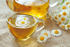 Chamomile tea healthy natural herbal relaxation Royalty Free Stock Photo