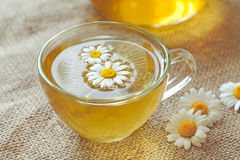 Chamomile tea herbal alternative medicine beverage Stock Photo