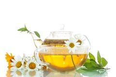 Chamomile tea Stock Photography