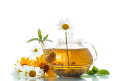 Chamomile tea Stock Photography