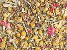 Chamomile tea - herbal mixture Stock Images
