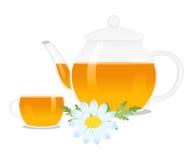 The chamomile tea Stock Image