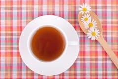 Chamomile tea. Stock Image