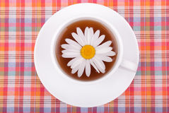 Chamomile tea. Royalty Free Stock Photos