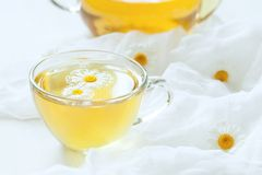 Chamomile tea natural alternative medicine Royalty Free Stock Image