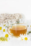 Chamomile tea Royalty Free Stock Images
