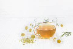 Chamomile tea Stock Image