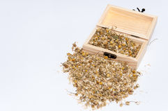 Chamomile tea in a wooden box and retro wooden spoon Royalty Free Stock Photos