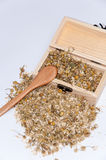 Chamomile tea in a wooden box and retro wooden spoon Stock Photo