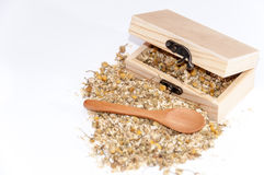 Chamomile tea in a wooden box and retro wooden spoon Stock Photography