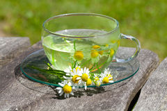 Chamomile tea on wooden table Stock Image