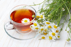 Chamomile tea. On wooden table still life stock images