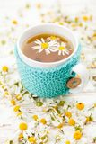 Cup of chamomile tea. Chamomile tea in a wool covered cup Stock Photography
