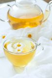 Chamomile tea yellow beverage healthy lifestyle Stock Images