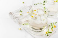 Free Chamomile, Thyme And Honey Cocktail Royalty Free Stock Photography - 100150907