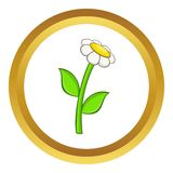 Chamomile vector icon. In golden circle, cartoon style isolated on white background Stock Photography