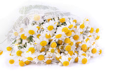 Chamomile wedding bouquet Royalty Free Stock Photography