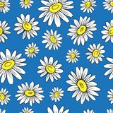 Chamomile wild field flower isolated on blue background, hand drawn daisy sketch vector doodle illustration, seamless. Floral pattern for design package tea Stock Photography