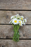 Chamomile on wooden table Royalty Free Stock Photos