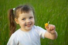 chamomileflickan har little av rivna petals Arkivbild