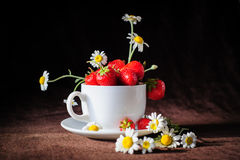 Chamomiles και φράουλες στο φλυτζάνι Στοκ Εικόνες