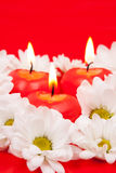 Chamomiles and candles Stock Photography