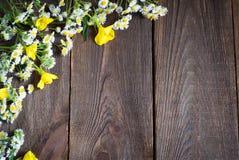 Chamomiles at dark wooden surface Stock Photos