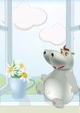 chamomiles dzień hipopotam pogodny Obrazy Stock