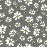 Chamomiles, floral vector seamless pattern Royalty Free Stock Photo