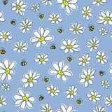 Chamomiles, floral vector seamless pattern Stock Photography