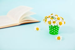 Chamomiles. Flowers in bucket and book. Chamomiles in vase. Spring Royalty Free Stock Photos