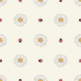 Chamomiles and ladybugs seamless pattern Royalty Free Stock Photography
