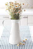 Chamomiles in pitcher. Bouquet of simple chamomiles in vintage pitcher on kitchen table Stock Photo