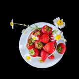 Chamomiles and strawberries in the cup Royalty Free Stock Photo