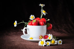 Chamomiles and strawberries in the cup Royalty Free Stock Images