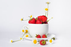Chamomiles and strawberries in the cup Stock Image