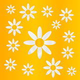 Chamomiles on yellow background. Royalty Free Stock Images