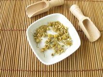 Chamomilla recutitia flowers, Matricariae flos Royalty Free Stock Image