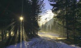 Chamonix Foto de archivo libre de regalías