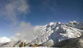 Chamonix Forest Photo stock