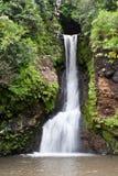 Chamouze Waterfall Royalty Free Stock Image