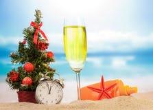 Champán con la decoración de la Navidad Fotografía de archivo libre de regalías