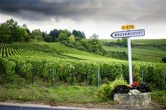 Champán Muestras de carretera nacional francesas del vino que llevan a los viñedos superiores de Champán francia fotografía de archivo