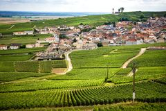 Champán, viñedo en las colinas cerca de Vernezay En el fondo el llano con los viñedos francia Fotografía de archivo