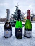 Champán y nieve fotografía de archivo libre de regalías