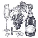 Champán y uvas fijados Fotos de archivo
